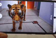 AR Google 3D Animals